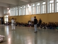 FK-XXVISettCultSciTecn2016-C7