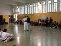 FK-XXVISettCultSciTecn2016-C8